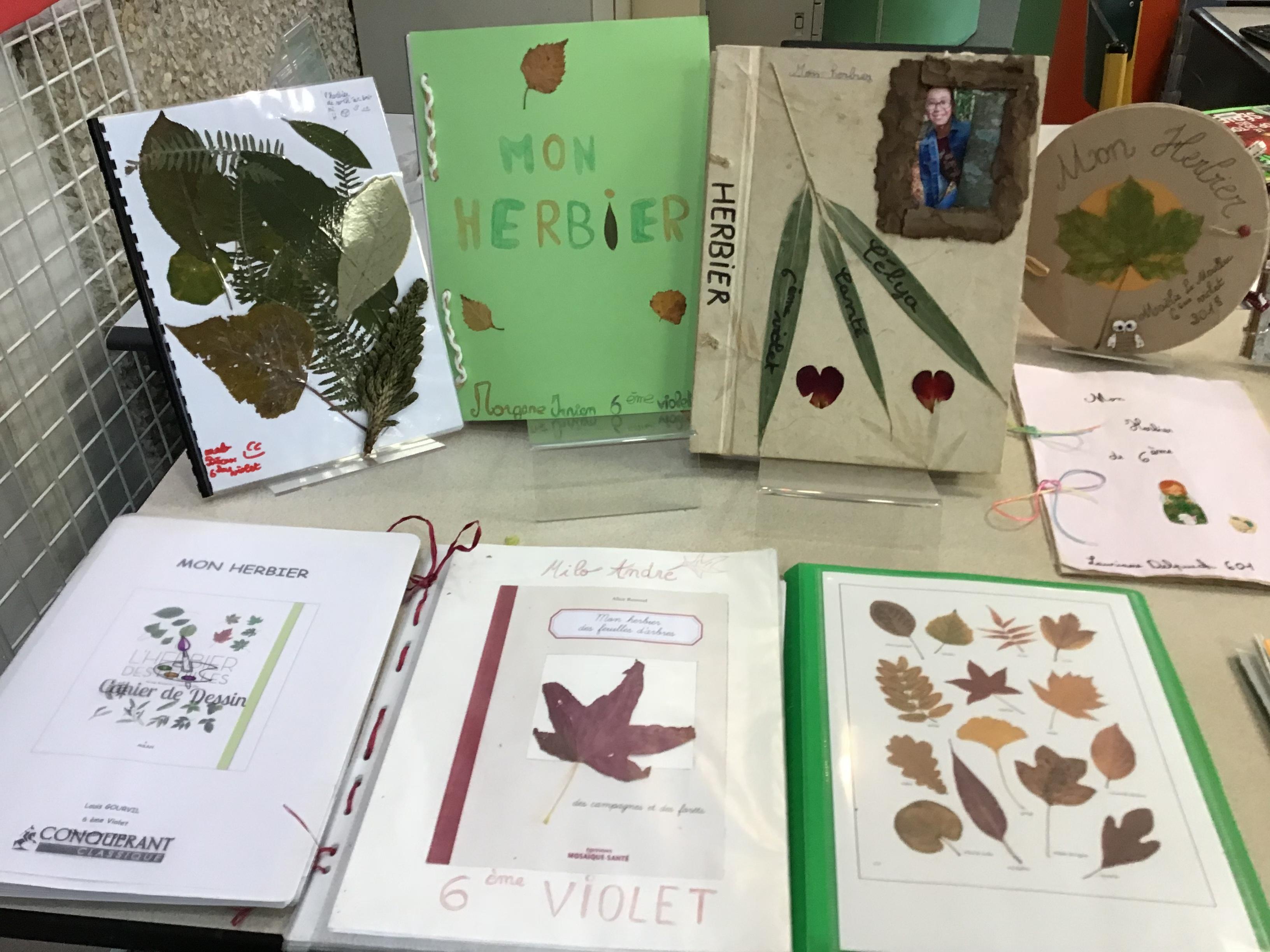 actualités : collège saint augustin - st augustin exposition d'herbiers